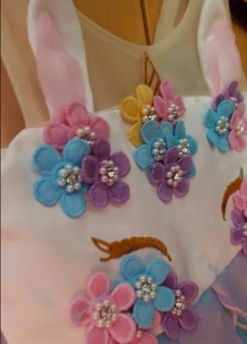 Unicorn Rainbow Embroidery Princess Dress photo review